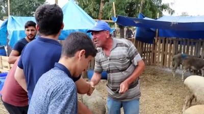 Hayvan pazarında promosyonlu satışlar - TEKİRDAĞ