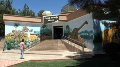 Gaziantep Zooloji ve Doğa Müzesi'ne yoğun ilgi
