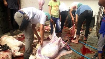 'Gazze'ye Hayat Ol' platformu Gazze'de kurban eti dağıttı - GAZZE