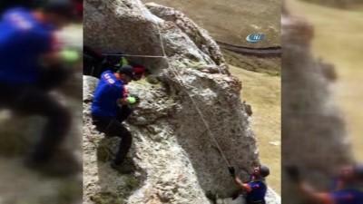 Ağrı AFAD'tan filmleri aratmayan kurtarma operasyonu... 2 keçi 4 saatte kurtarıldı
