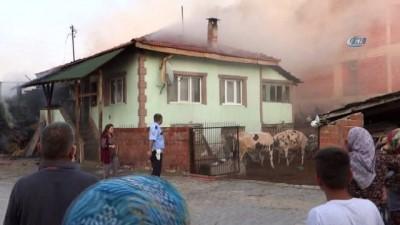 Büyükbaş hayvanlar yangından son anda kurtarıldı
