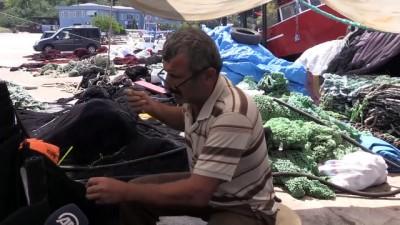 Karadenizli balıkçılarda yeni av sezonu heyecanı - ORDU