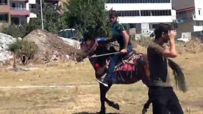 - Solhan'da yöresel at yarışları ile çifte kutlama