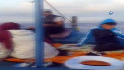 Yunuslar balıkçı teknesiyle yarıştı... O anlar kameralara böyle yansıdı