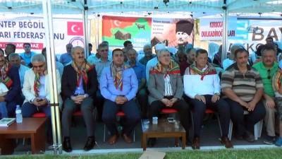 'Tolgadirliler Dulkadirliler Türkmen Toyu... Etkinlikte Türk gelenek ve görenekleri tekrar yaşatıldı