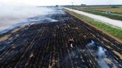 Çukurova'da mısır hasadıyla birlikte başlayan anız yangınları havadan böyle görüntülendi
