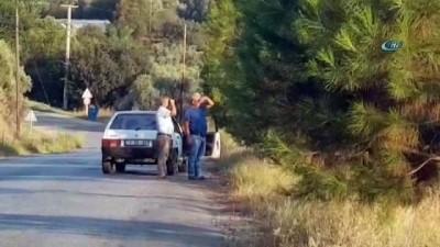 Nazilli'de arazi yangını 1.5 hektar alan cayır cayır yandı