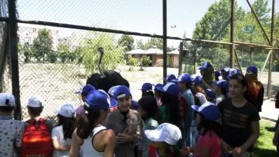 Sokakta çalışan çocuklar Evcil Hayvanlar Parkı'nda