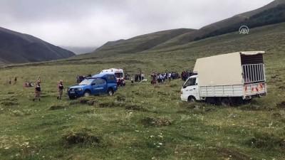 Yıldırım isabet eden 17 yaşındaki çoban hayatını kaybetti - ERZURUM