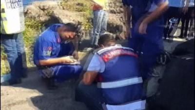 Karadeniz sahil yolunda meydana gelen trafik kazasında 3 kişi hayatını kaybetti