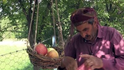Yetiştirdiği meyveleri 'göz hakkı sepeti' ile ikram ediyor - BİNGÖL