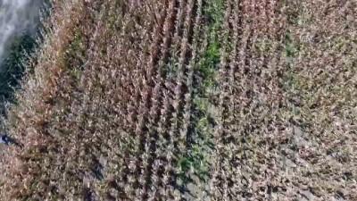 Firari hükümlü 'drone' yardımıyla yakalandı - ÇANAKKALE
