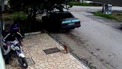 Motosiklet çalan hırsızlar Kocaeli'de kaza yapınca yakalandı... Hırsızlık anları kamerada