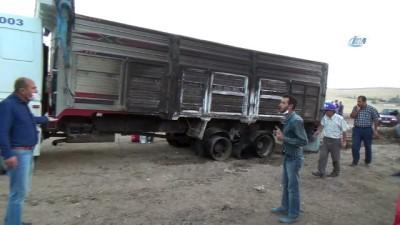 Yozgat'ta anız yangını 8 bin saman balyasını kül etti