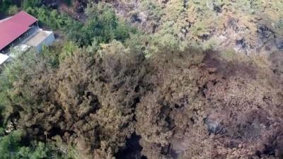 Hatay'daki yangının etkileri havadan görüntülendi