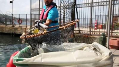 Kıyılardan 12 bin metreküp çöp toplandı - İSTANBUL