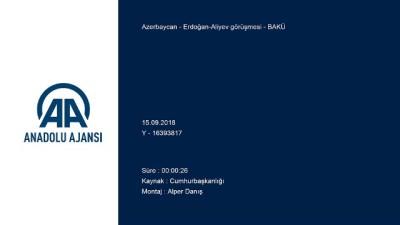 Erdoğan-Aliyev görüşmesi - BAKÜ