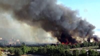 Kağıt fabrikasında çıkan yangın söndürüldü - MUĞLA