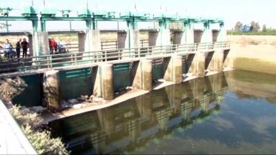 kanald -  Sulama kanalındaki ceset vinçle çıkarıldı