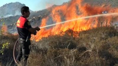 Bodrum'daki orman yangınına havadan ve karadan müdahale
