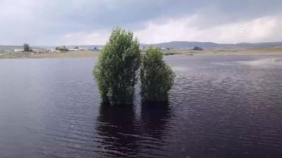 Kars Barajı tarıma 'can suyu' olacak