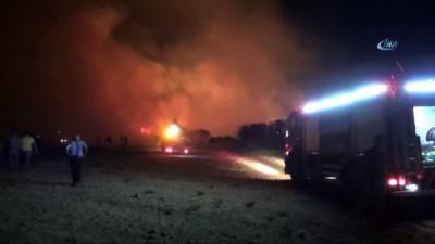 Didim'deki yangın faciasının boyutu gün ağarınca ortaya çıktı
