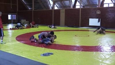 Milli güreşçiler dünya şampiyonası yolunda - BOLU