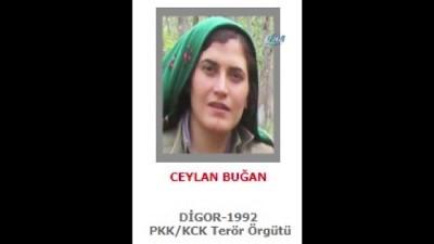 300 bin TL ödüllü 'Gri' listede aranan kadın terörist öldürüldü