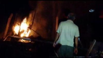 Alanya'da elektrik tellerinin üzerine devrilen çam ağaçları yangına sebep oldu