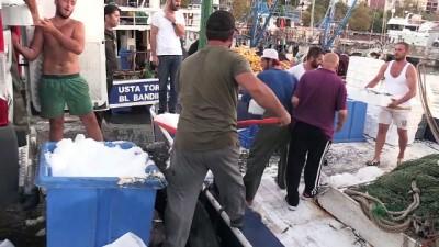 Karadenizli balıkçıların ağları istavritle doldu - DÜZCE