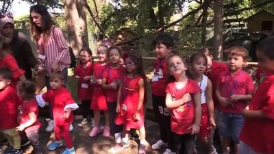 Uluslararası Kırmızı Panda Günü - BURSA