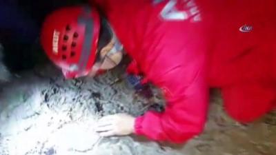 yasli adam -  Ormanda kayboldu, ekipler saatlerdir onu arıyor