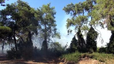 Titreyengöl mevkisinde orman yangını - ANTALYA