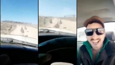 Video: Avustralya'da deve kuşlarını 'acımasızca' ezen şoför aranıyor