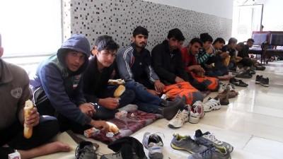 147 düzensiz göçmen yakalandı - VAN