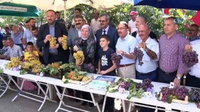 Bursa'nın en iyi üzümleri belli oldu