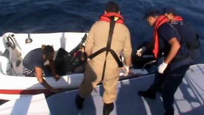 nani - Ege Denizi'nde yasa dışı geçişler - MUĞLA