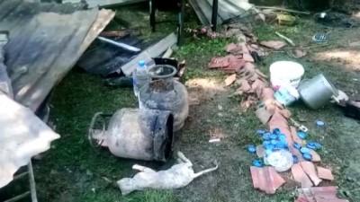 Hayvansever kadın çıkan yangında kedileriyle birlikte öldü