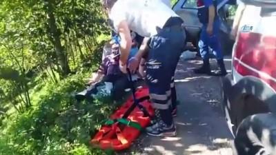 saglik ekipleri -  Ordu'da freni patlayan otomobil ağaca çarptı: 6 yaralı Haberi