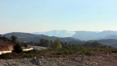 muhalifler - Suriye sınırında orman yangını - HATAY