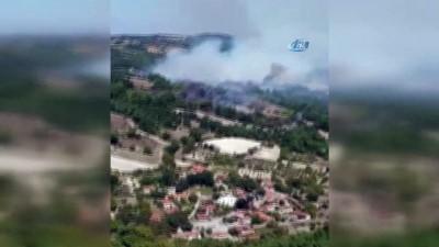 trol -  Zirai alanda başlayan yangın ormana sıçradı Haberi