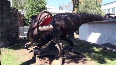 KTÜ'de Doğa Müzesi oluşturulacak - TRABZON