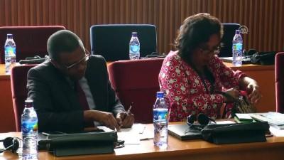 'Dünya ekonomisi halen sallantıda' - ADDİS ABABA