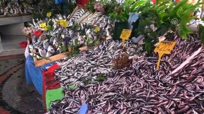 Palamut bolluğu hem balıkçıları hem vatandaşı sevindiriyor - EDİRNE