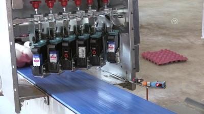 TKDK desteğiyle modernize ettiği çiftlikte ihracata başladı - AFYONKARAHİSAR