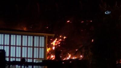 sanayi sitesi -  Ayvalık'ta sanayi sitesi ile asfalt şantiyesi arasındaki bölgede çıkan yangın korkuttu