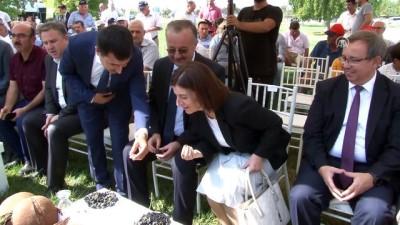 Çeltiğin başkentinde 41 çeşit pilav yapıldı - EDİRNE
