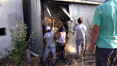 Domaniç'te yangın - KÜTAHYA