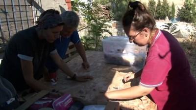 Maydos Kilisetepe Höyüğü'nde 4 bin yıllık savunma duvarı kalıntıları bulundu