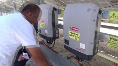 Niğde OSB 100 dönüm üzerine güneş enerji santrali kurdu